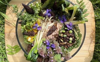 Spring into Self Care with this Wild Foraged Ramen Recipe